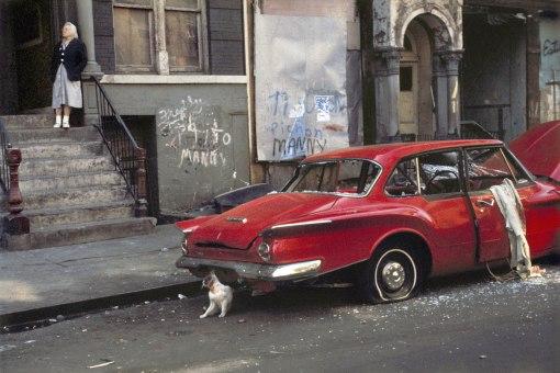 helen-levitt-cat-next-to-red-car-new-york-1973-web